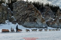 Jeff King runs past cliffs on the Yukon River shortly after leaving the Ruby Checkpoint during the 2016 Iditarod. March 11, 2016 Photo by Jeff Schultz