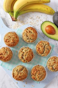 Delicious oat muffins with no added sugar or honey; sweetened naturally with banana, avocado and apple sauce! Great for baby led weaning and older kids too!