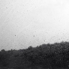 Rainy dayzz