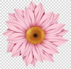 Watercolor Flowers, Watercolor Paintings, Sunflower Art, Free Sign, Gerbera, Color Trends, Planting Flowers, Daisy, Clip Art