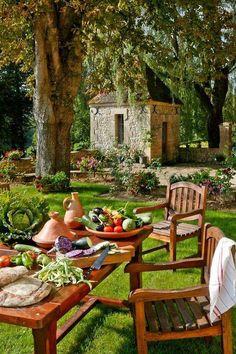 Coisas de Terê→ Preparando o almoço no jardim …
