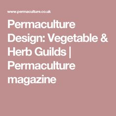 Permaculture Design: Vegetable & Herb Guilds | Permaculture magazine