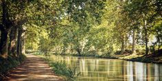 The Historic, Symbolic Canal du Midi
