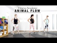 Animal Flow | The Beauty Effect
