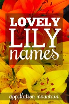 So many lovely flower names inspired by Lily. Baby Girl Names, Boy Names, Baby Name Signs, Name List, Flower Names, Flower Power, Lily, Mountain, Flowers