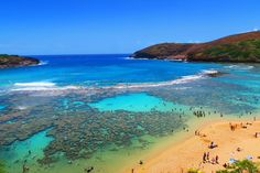 Free itinerary for 4 days or less in Honolulu and Oahu. Get useful tips & daily itineraries, discover top beaches, things to do in Oahu & more. Honolulu Oahu, Oahu Hawaii, Oahu Vacation, Hawaii Travel Guide, Hanauma Bay, Beach Tops, Things To Do, Day, Water