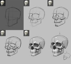 Reference Images for Artists