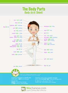 Like Chinese massages? Here's an infographic of body parts in Chinese to explain where you'd like to get a massage. Comes in handy in other situations too!