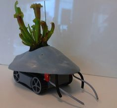 Robotic Plant Drone Moves Houseplants to Sunny Spots : TreeHugger