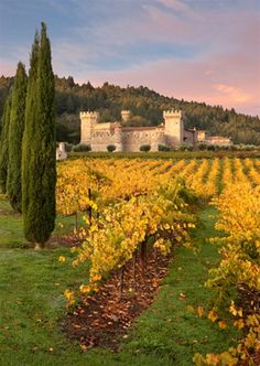 A really cool place in Napa: Castello d'Amoroso.  ASPEN CREEK TRAVEL - karen@aspencreektravel.com