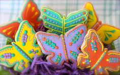 Spring butterfly collection of sugar cookies