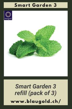 Description  Get more varieties for your Smart Garden 3 J in each case  3 plants per package for a complete Smart Garden refill. basil chives Pepper coin Mini tomatoes chili thyme lavender parsley. #mygarden #horticulture #greenthumb