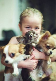 Meus bebês ♡... re-pin by www.StoneArtUSA.com ~ affordable custom pet memorials for everyone.