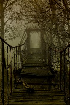 ominousraincloud:  Death Bridge | By Barbu Cornel Madalin