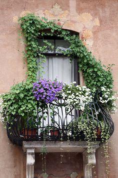 Small balcony decor - the most romantic Juliet balcony design ideas Purple Petunias, Purple Plants, French Balcony, Paris Balcony, Jardin Decor, Juliet Balcony, Iron Balcony, Balcony Window, Tiny Balcony
