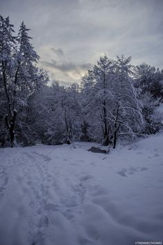a winter landscape by tremmel thomas on 500px