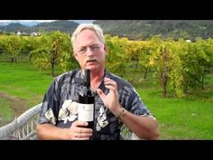 Scott Harvey describes the Old Vine Zinfandel from his grandfather's vineyard that was planted during Prohibition. #OldVine #Zinfandel #winemaking http://scottharveywines.com