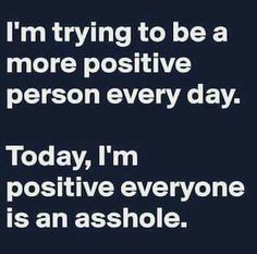 I'm trying to be a more positive person every day. Today, I'm positive everyone is an asshole.
