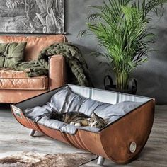 Stoere Hondenmand Roest