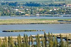 flickr velence hungary - Google zoeken Hungary, Landscape, Google, Scenery, Corner Landscaping