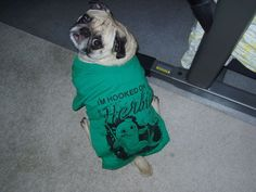 Doggie T-Shirt - picture instructions on how to turn an old t-shirt into a doggie t-shirt