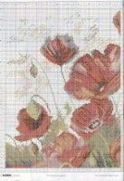Gallery.ru / Фото #21 - Cross Stitcher №213 - Orlanda