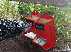 I love these DIY grit and calcium dispensers I made for our chickens using vintage match boxes. Chicken Swing, Chicken Garden, Backyard Chicken Coops, Chicken Runs, Chickens Backyard, Diy Chicken Feeder, Keeping Chickens, Raising Chickens, Chicken Treats