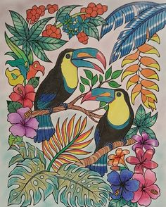 ColorIt Blissful Scenes Colorist: Kathy Gibbs #adultcoloring #coloringforadults #adultcoloringpages #blissfulscenes