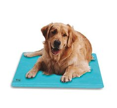 Soothsoft Innovations Canine Thermoregulating Cooling Dog Bed A must have for hot summer days and warm climates! Keep your dog cool from the summer heat with the Thermoregulating Cooling Dog Bed! Grea
