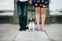 couples with dogs photography