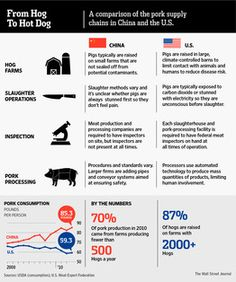 What China Can Learn From America's Hot Dogs - http://www.PaulFDavis.com Global Food Consultant, Health Coach and Creator of Parasite Cleanse to Remove Infectious Diseases (info@PaulFDavis.com)