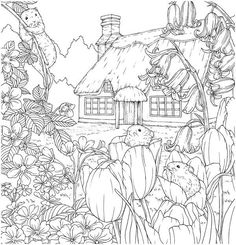 Flower Coloring Pages, Coloring Book Pages, Coloring Sheets, Free Adult Coloring, Printable Adult Coloring Pages, Black And White Drawing, Black And White Pictures, Wall Collage, Making Ideas