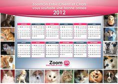 Vous aimez comme nous les animaux ??  Venez Téléchargez notre calendrier #ZoomOn Entre chiens et chats