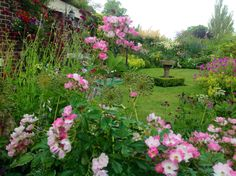 NGS Open Day - Brooklyn 29/6/14. Looking through the flowers.