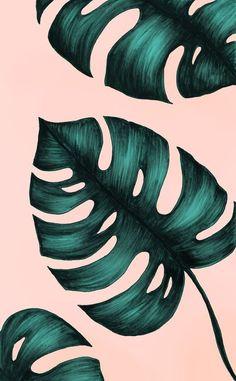 New Wallpaper Pastel Iphone Art Prints Ideas Wallpaper Pastel, Plant Wallpaper, Tumblr Wallpaper, Wallpaper Backgrounds, Palm Leaf Wallpaper, Floral Wallpaper Iphone, Tropical Wallpaper, Wallpaper Lockscreen, Trendy Wallpaper