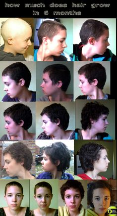 How long to grow hair shaved useful piece