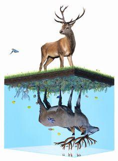 Animales fuera de su ambiente: Ilustraciones de Josh Keyes | Undermatic