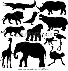 Vector Set of Black Tropical Animals Silhouettes - stock vector