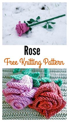 Rose Flower Free Knitting Pattern