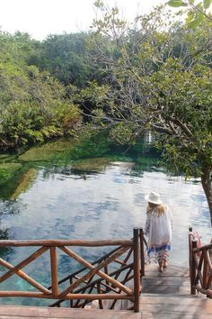 Top Day Trips From Tulum Mexico Cenote Azul | The Republic of Rose