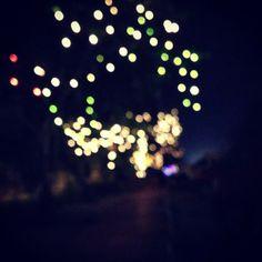 Fairy lights - pretty