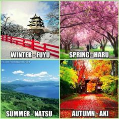 Names of the Seasons in Japanese omg i didint know that natsu was summer my favorite characters name is natsu (fairy tail) Japanese Phrases, Japanese Names, Japanese Words, Hiragana, Study Japanese, Japanese Culture, Japanese Symbol, Japanese Kanji, Japanese Language Learning