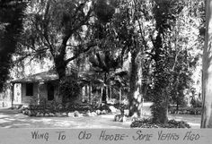 Southern California's first eucalypti, planted in 1865 by William Wolfskill, line the path to the Hugo Reid Adobe in this circa 1920 photo. Courtesy of the Arcadia History Collection, Arcadia Public Library. Kern County California, California History, Vintage California, California Love, Southern California, California Vacation, Garden Of Allah, San Luis Obispo County, San Fernando Valley