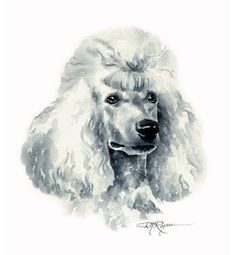BROWN POODLE AT THE BEACH Dog Watercolor 8 x 10 Art Print by Artist DJR