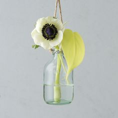 "Choose your favorite fresh cuts and suspend a cluster of these petite, bottle-shaped vases from garden branches or around the house for a blooming statement.- Glass, jute twine- Wipe clean with damp cloth- Indoor or outdoor use- Hanging rope: 13""L- Imported3.75""H, 2""diameter"