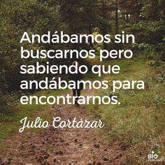 Julio Cortázar #Personalizable
