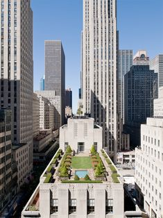 The grass is always greener on the other side...  Rockefeller Rooftop Garden