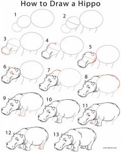 How to Draw a Hippo Step by Step