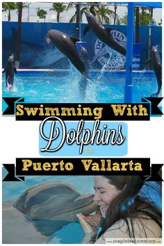 When I was on vacation in Mexico, I got to swim with the dolphins and kiss a sea lion on my trip to Dolphin Discovery in Puerto Vallarta.