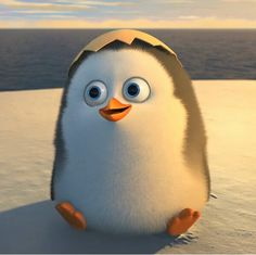 Baby Private from penguins of Madagascar